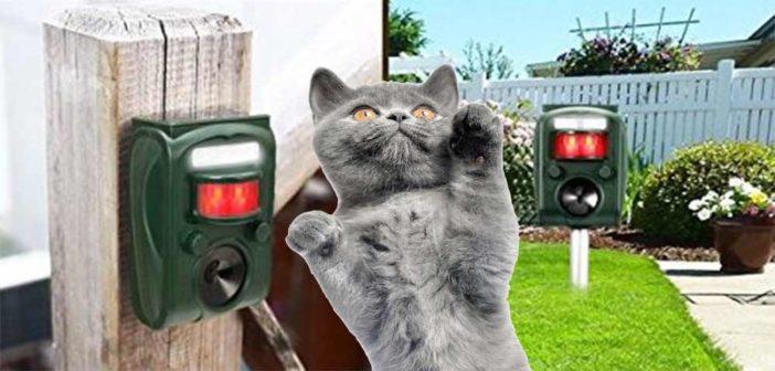 Katzenschreck Test und Erfahrungen